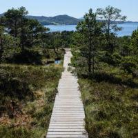 188_6_Nordland_022