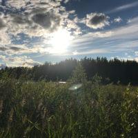 189_1_Lappland_017