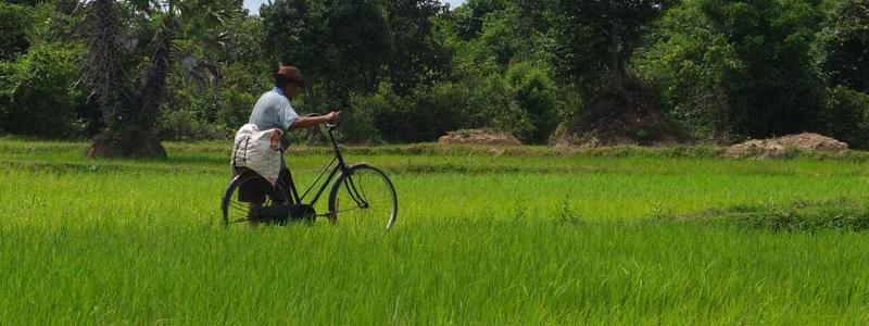AngkorH