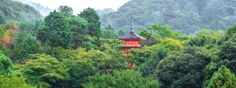 KyotoH